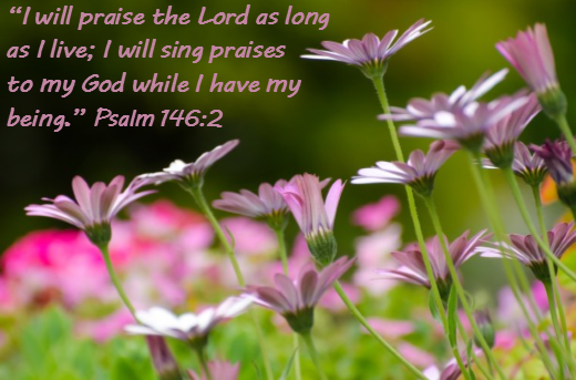 Psalm-Chapter-146-Verse-2